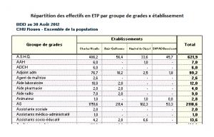 Aperçu d'un tableau de répartition des effectifs réels par groupe de grades x établissement