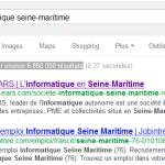 Prise d'écran du positionnement sur les moteurs de recherche de l'informatique en Seine-Maritime