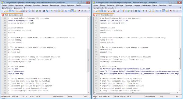 11 - OpenVpn - Configuration du fichier client.ovpn pour Microsoft Windows-600